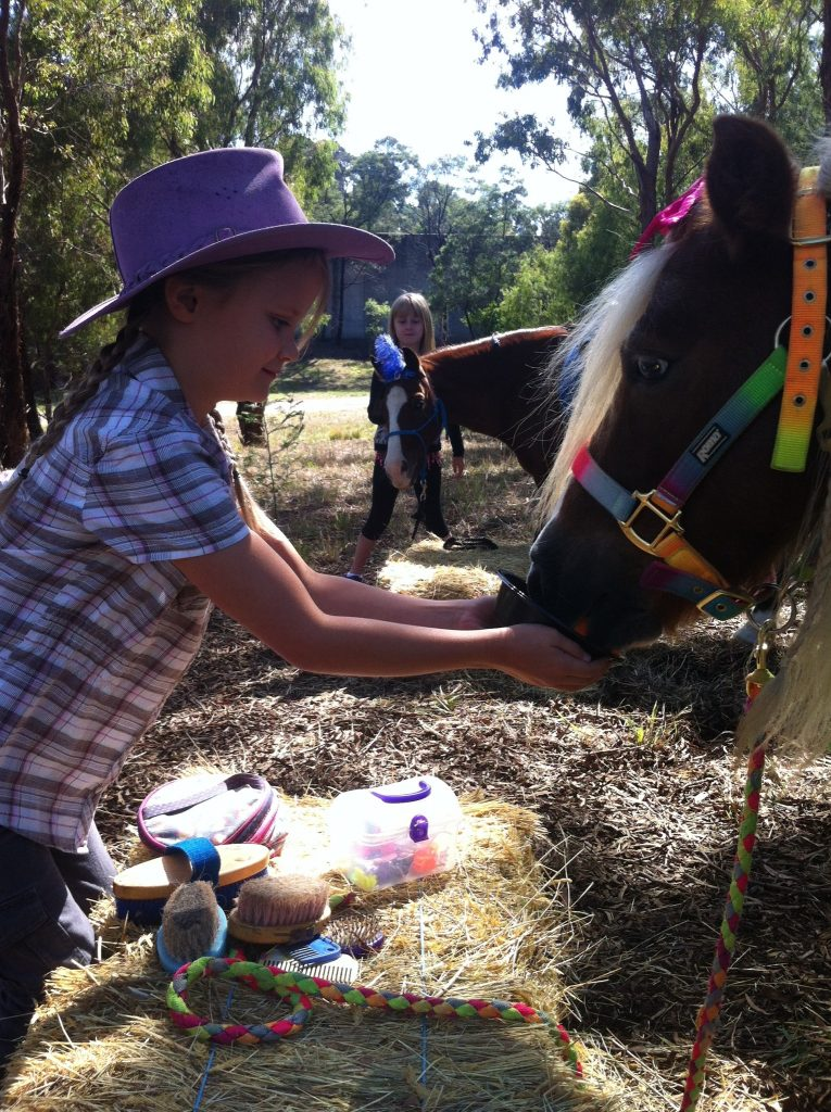 Pony Parties gives you the oportunity to brush and feed the ponies as well as having a ride!